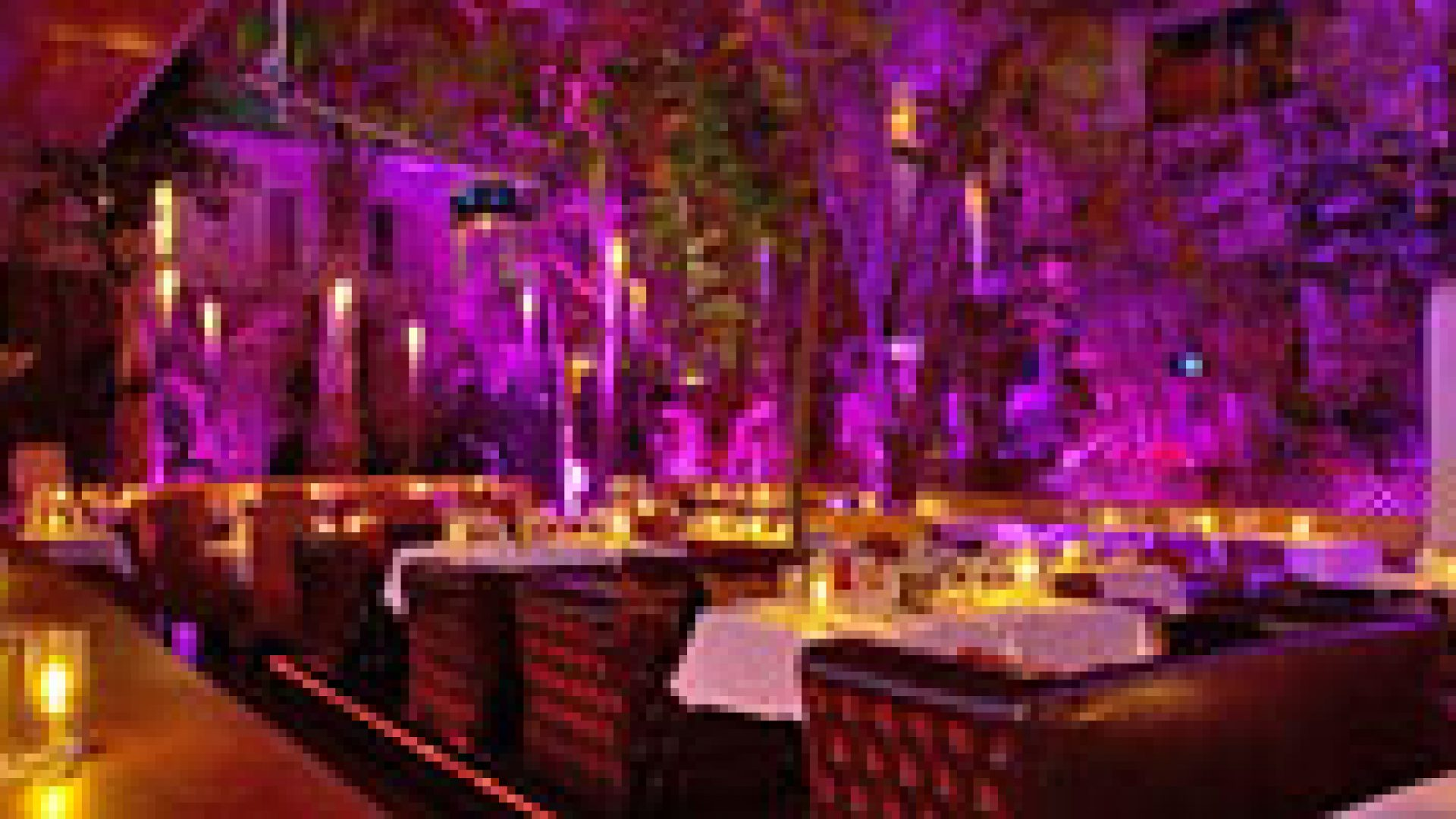 miami beach bars, south beach clubs, things to do in miami, what to do in miami, wednesday night miami, clubs in miami, miami beach restaurants, restaurants in miami, miami beach food, best lounges in miami, top restaurants in miami beach, fun restaurants miami, south beach restaurants, Miami restaurants, Events in miami